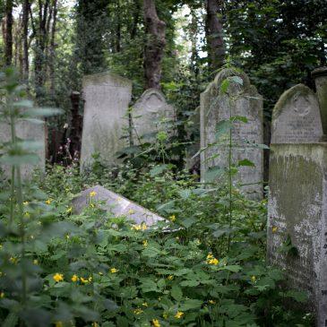 Lontoon hautausmaat: Tower Hamlets Cemetery Park